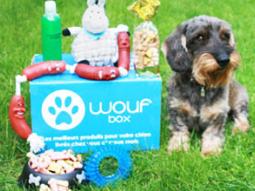 une-wouf-box-pour-ton-chien-6290089