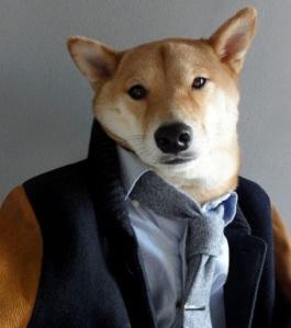 konbini-blogdog