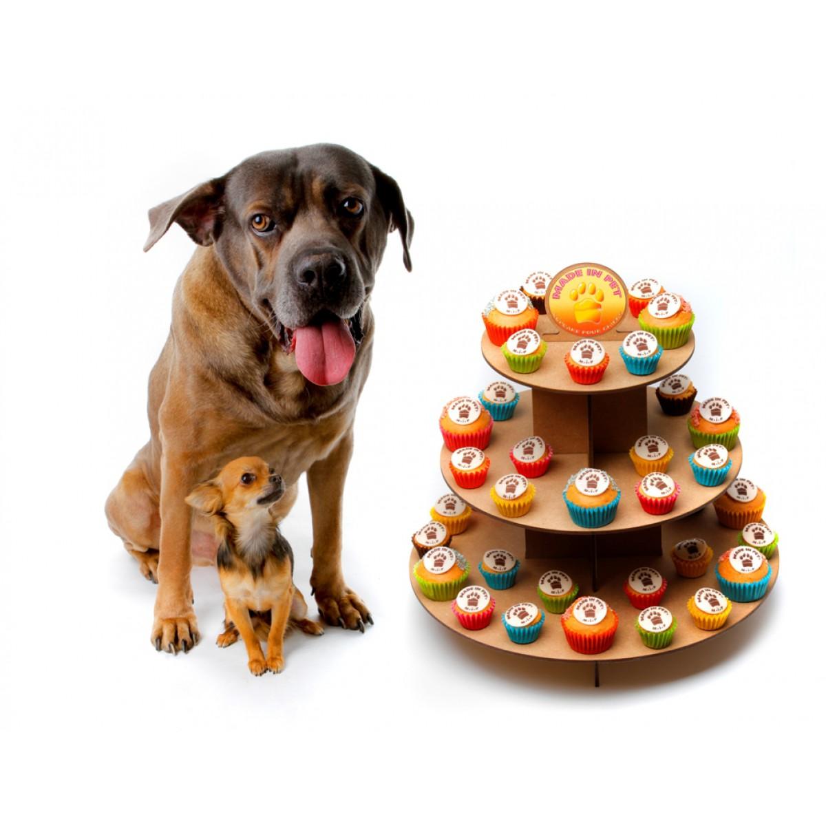 nouvelles friandises pour chiens   Thefashiondog